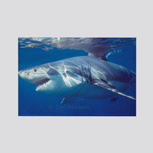 Great white shark on attack Rectangle Magnet