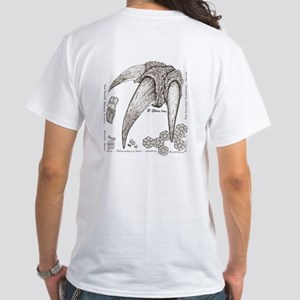 Fossils Armadillo and Ground Sloth White T-Shirt