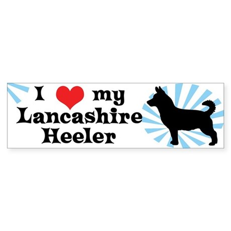 I Love My Lancashire Heeler Bumper Sticker