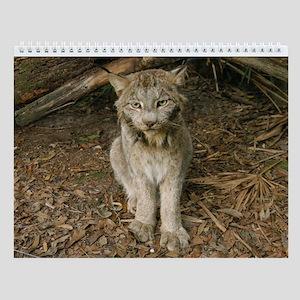 Canadian Lynx D0173 Wall Calendar