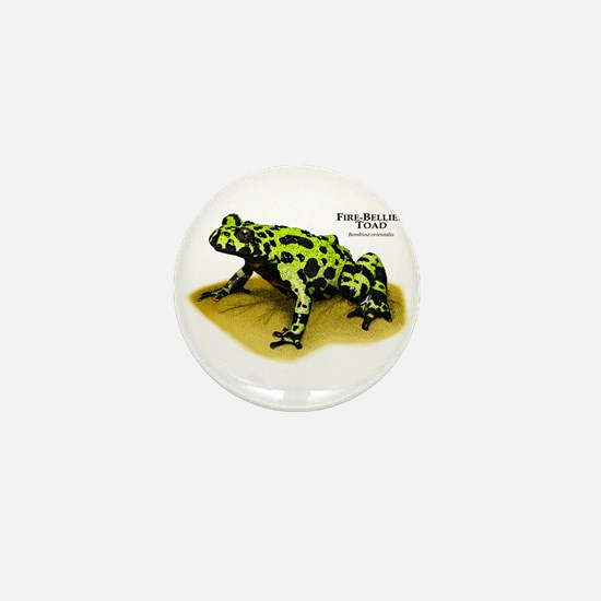 Fire-Bellied Toad Mini Button