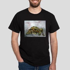 african desert tortoise land Dark T-Shirt