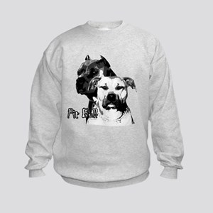 two heads pit bull design Kids Sweatshirt
