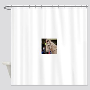 White horse head bow bridle in para Shower Curtain