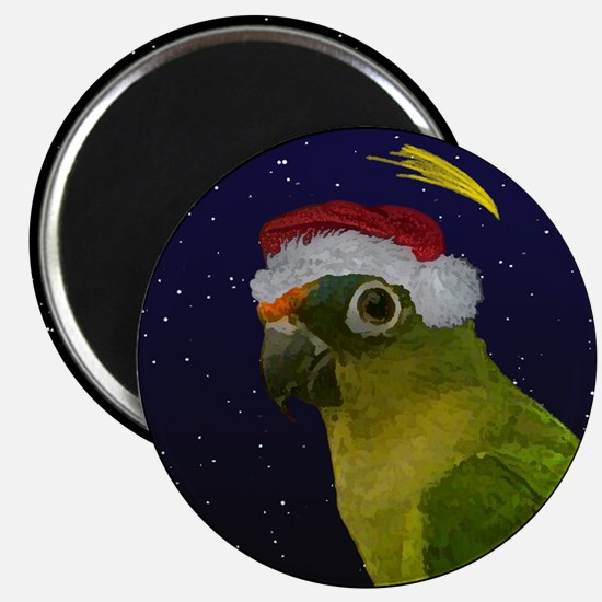 Christmas Night Peach Front Conure Magnet
