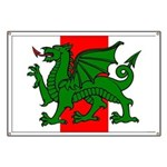 Midrealm Ensign Banner