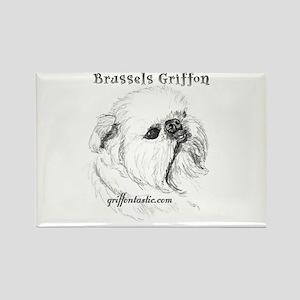 Rough Brussels Griffon Rectangle Magnet