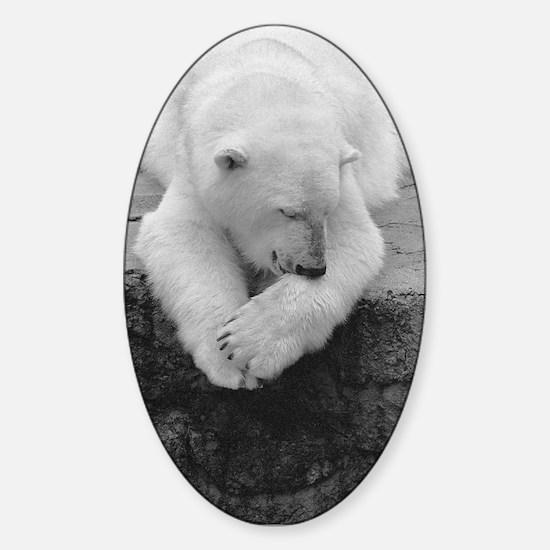 Bear Bite Oval Decal