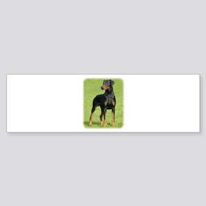 Dobermann 9P99D-60 Sticker (Bumper)