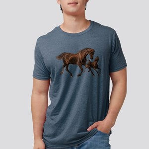 Chestnut Mare and Foal Mens Tri-blend T-Shirt