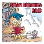 Smart Dummies 2018 Logo Square Car Magnet 3""