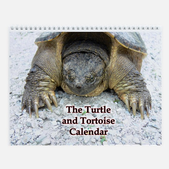 Turtle and Tortoise Wall Calendar