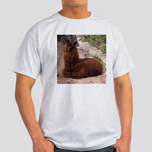 MACHU PICCHU AND LLAMA Light T-Shirt