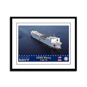 USNS Mercy T-AH-19 Framed Panel Print
