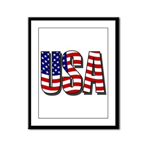 U.S.A. Framed Panel Print