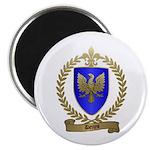DENYS Family Crest Magnet