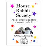 Adoption Stuff Small Poster