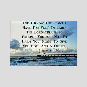 JEREMIAH 29:11 Rectangle Magnet