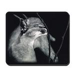 Caracal Mousepad