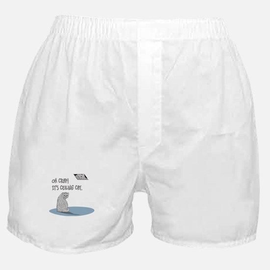 Do you know ceiling cat? Boxer Shorts