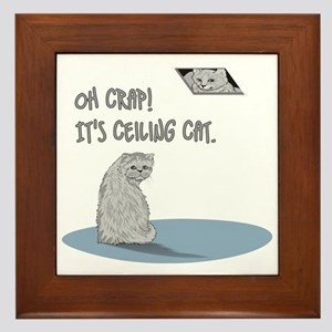 Do you know ceiling cat? Framed Tile