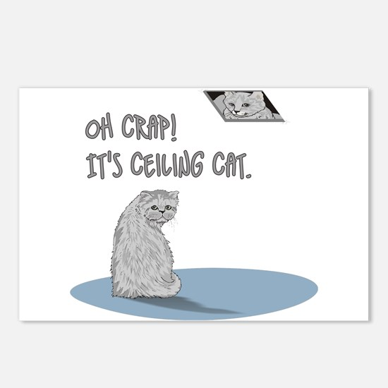 Do you know ceiling cat? Postcards (Package of 8)