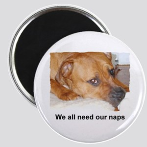 WE ALL NEED OUR NAPS Magnet