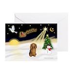 Night Flight-Dachshund Greeting Cards (Pk of 10)