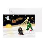 Night Flight/Dachshund LH Greeting Cards (Pk/20)
