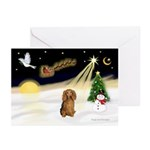 Night Flight/Dachshund LH Greeting Cards (Pk/20)