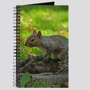 Squirrel On A Stump Journal