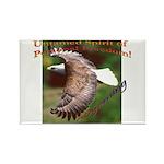 Untamed Spirit Two - Rectangle Magnet (10 pack)