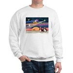Xmas Star & 2 Bassets Sweatshirt