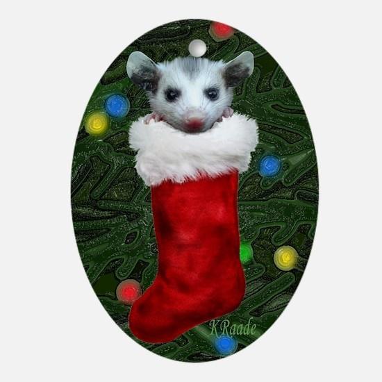 Possum Stocking Oval Ornament