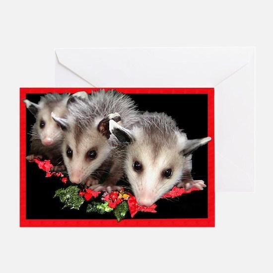 Christmas Opossum Greeting Card