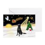 Night Flight/Flat Coat Rtr Greeting Cards (Pk of 2