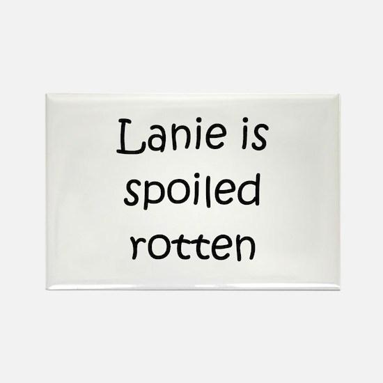 Lanie Rectangle Magnet