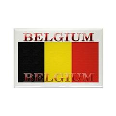 Belgium Belgian Flag Rectangle Magnet (100 pack)