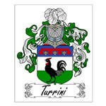 Turrini Family Crest Small Poster