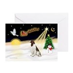 Night Flight/Eng Springer Greeting Cards(Pk of 10)