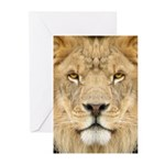 Lion Face Greeting Cards