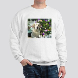 Bogart's Yellow Lab Sweatshirt