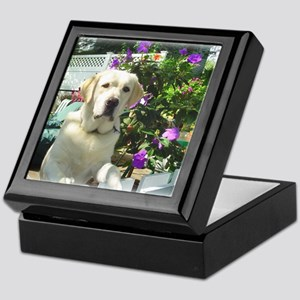Bogart's Yellow Lab Keepsake Box