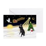 NightFlight/Poodle (ST-Blk) Greeting Cards (Pk of