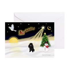 Night Flight/Poodle (Min) Greeting Cards (Pk of 10