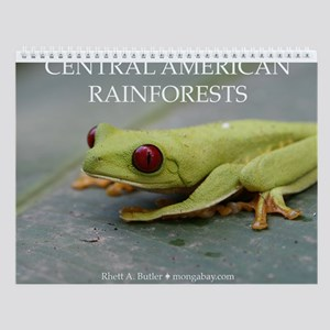 Rainforests of Central America Wall Calendar