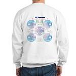 Smith Chart Sweatshirt