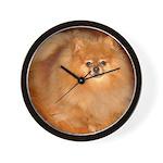 Tucker the orange Pomeranian Wall Clock