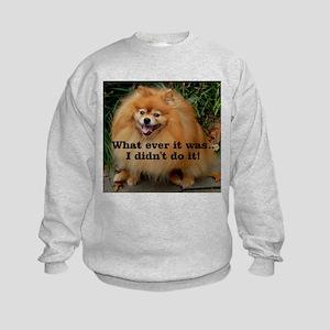 What ever ....Kids Sweatshirt
