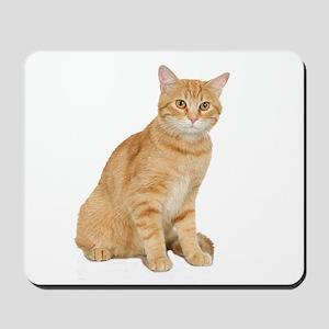 Yellow Cat Mousepad